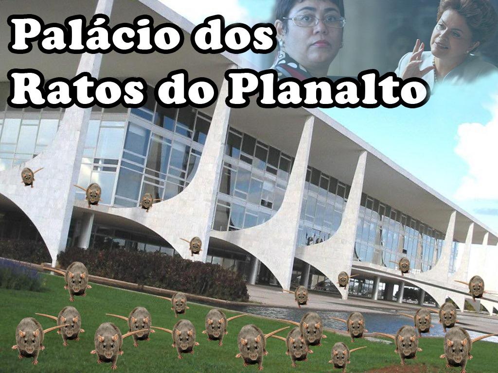 Resultado de imagem para RATOS NO palácio do Planalto